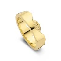 Damering Devoted guld bredde 6mm