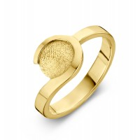 ring, fingerprint, fingerabdrück, vingeradruk, allure, gold, goud, yellow, geel,