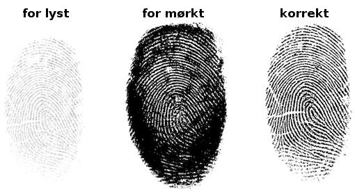 Example Fingerprint